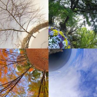 Four Seasons in Japan by: Masakazu Matsumoto Taken on: October 6, 2011 Source: Flickr
